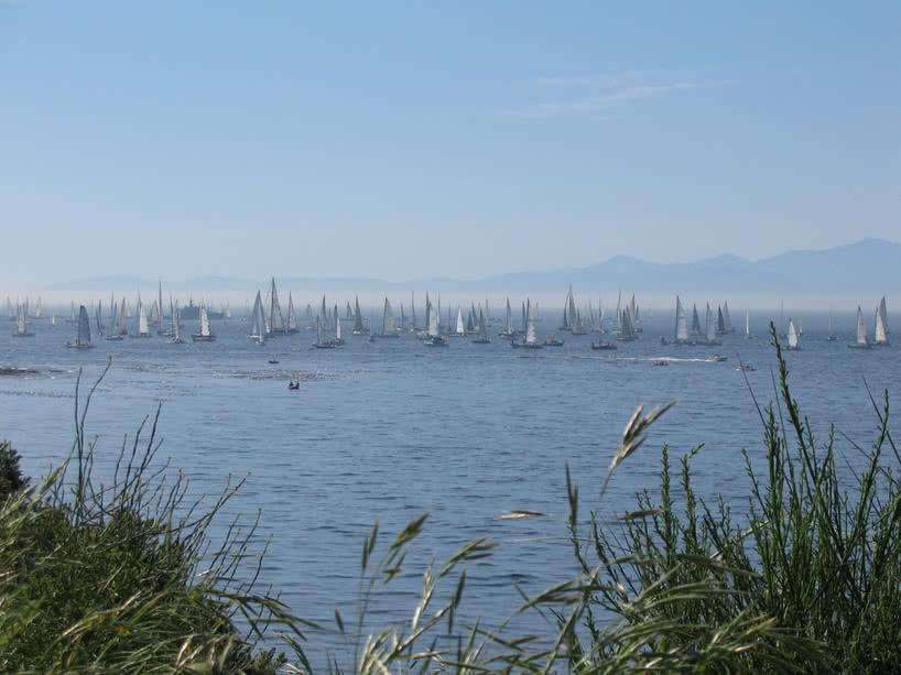 Swiftsure - courtesy of Tourism Victoria